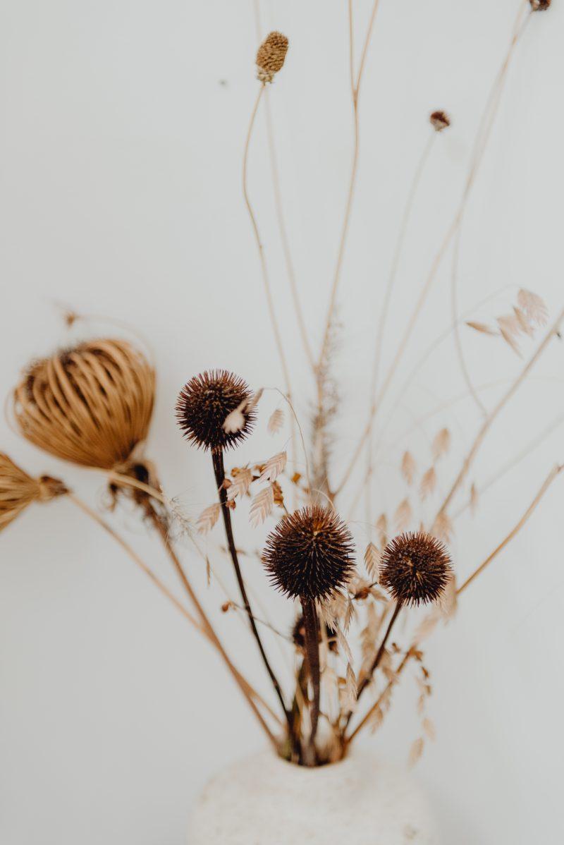 gezelligheid door bloemen